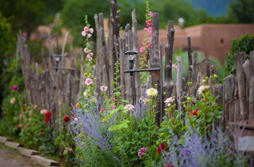 Spring in Santa Fe, New Mexico