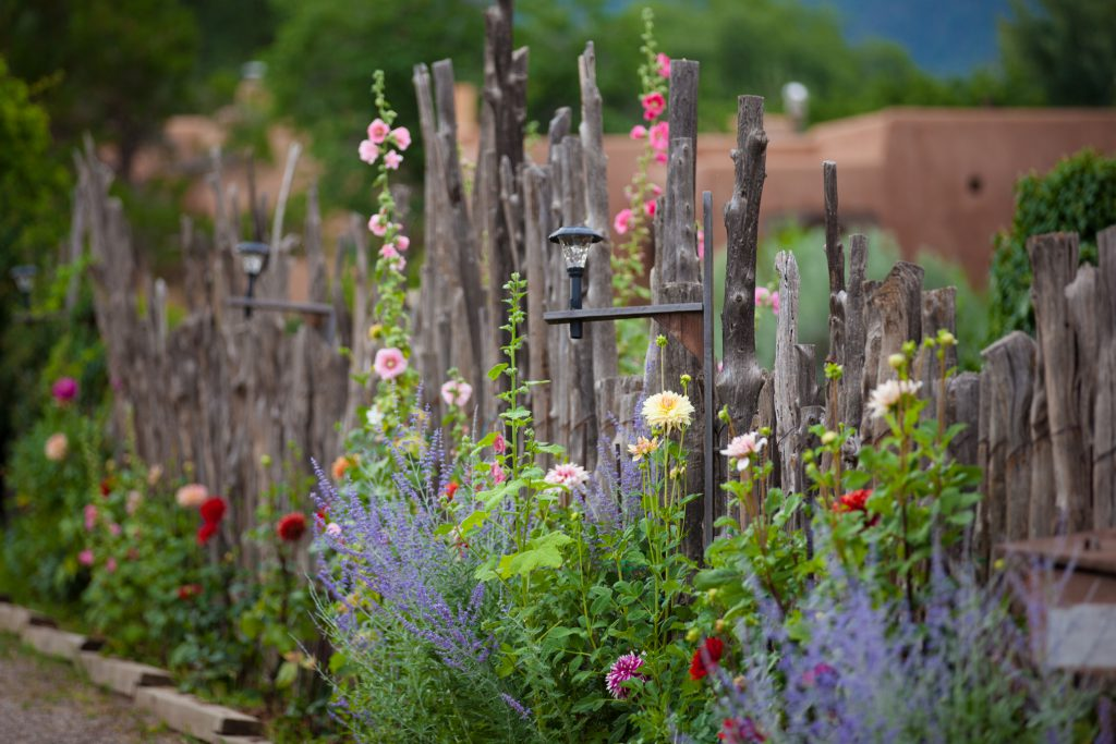 Spring in Santa Fe, New Mexico